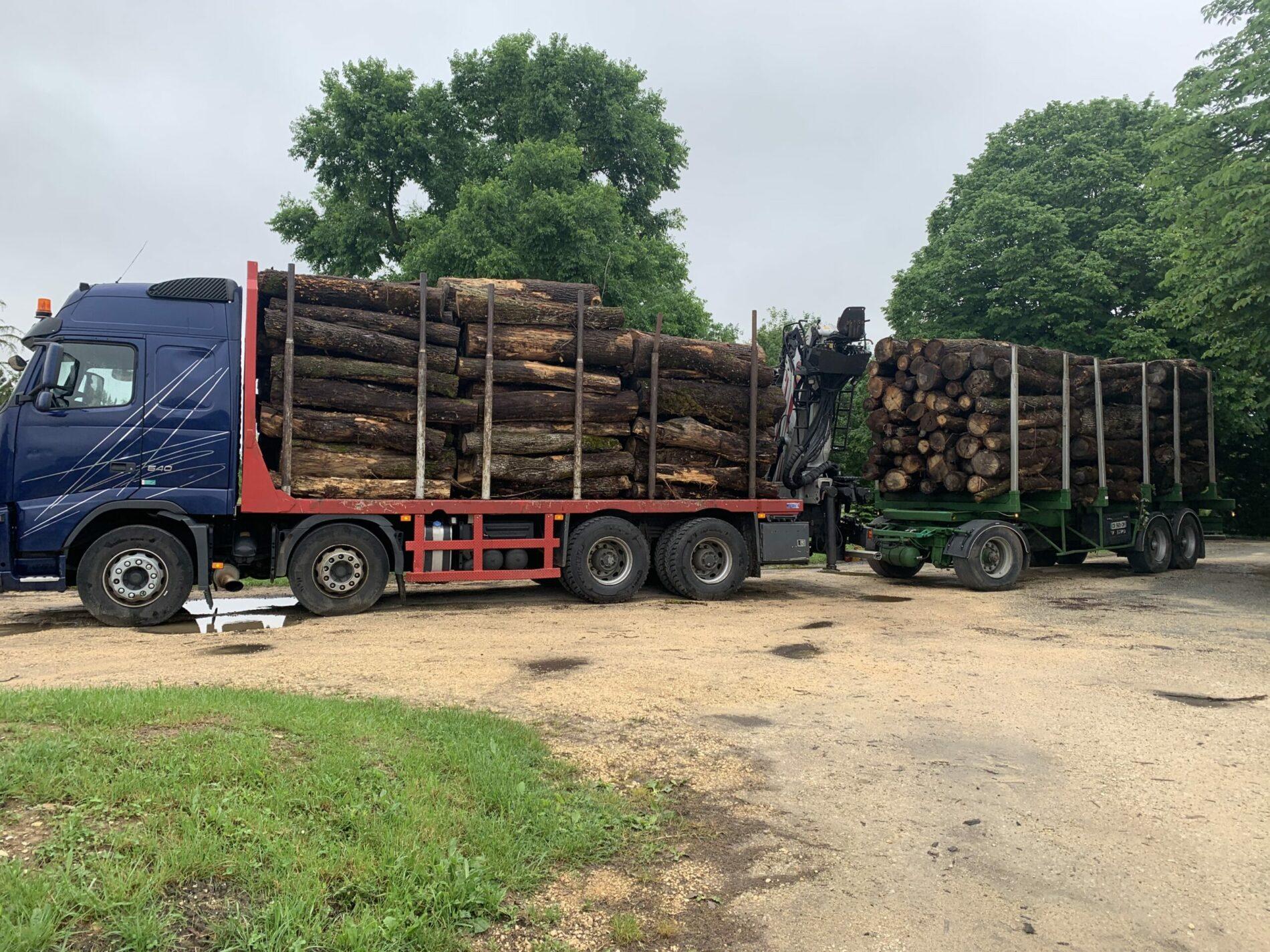 grossiste bois de chauffage Dordogne